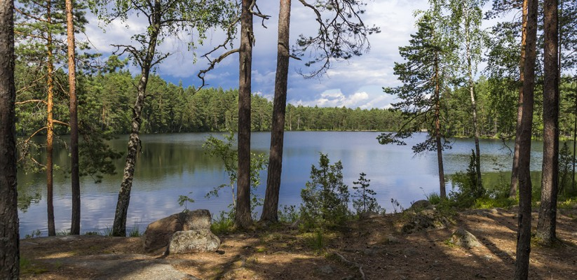 A Day Trip from Helsinki at the Nuuksio National Park Finland