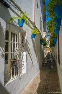 Calle de las Flores in Cordoba
